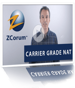 carrier grade nat reflect thumb