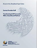 voip economics white paper cover thumbnail