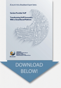 voip white paper