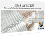 DDoS Attack Strategies Webinar
