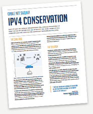 IPv4 Conservation