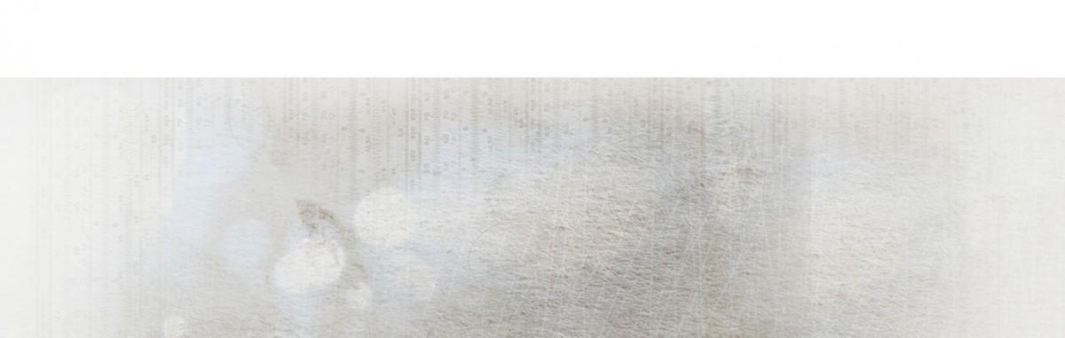 truvizion background grunge gray