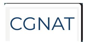 CGNAT Microsite Slider Tabbed Logo Updated