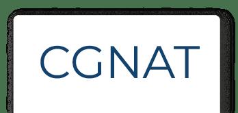 CGNAT Microsite Slider Tabbed Logo